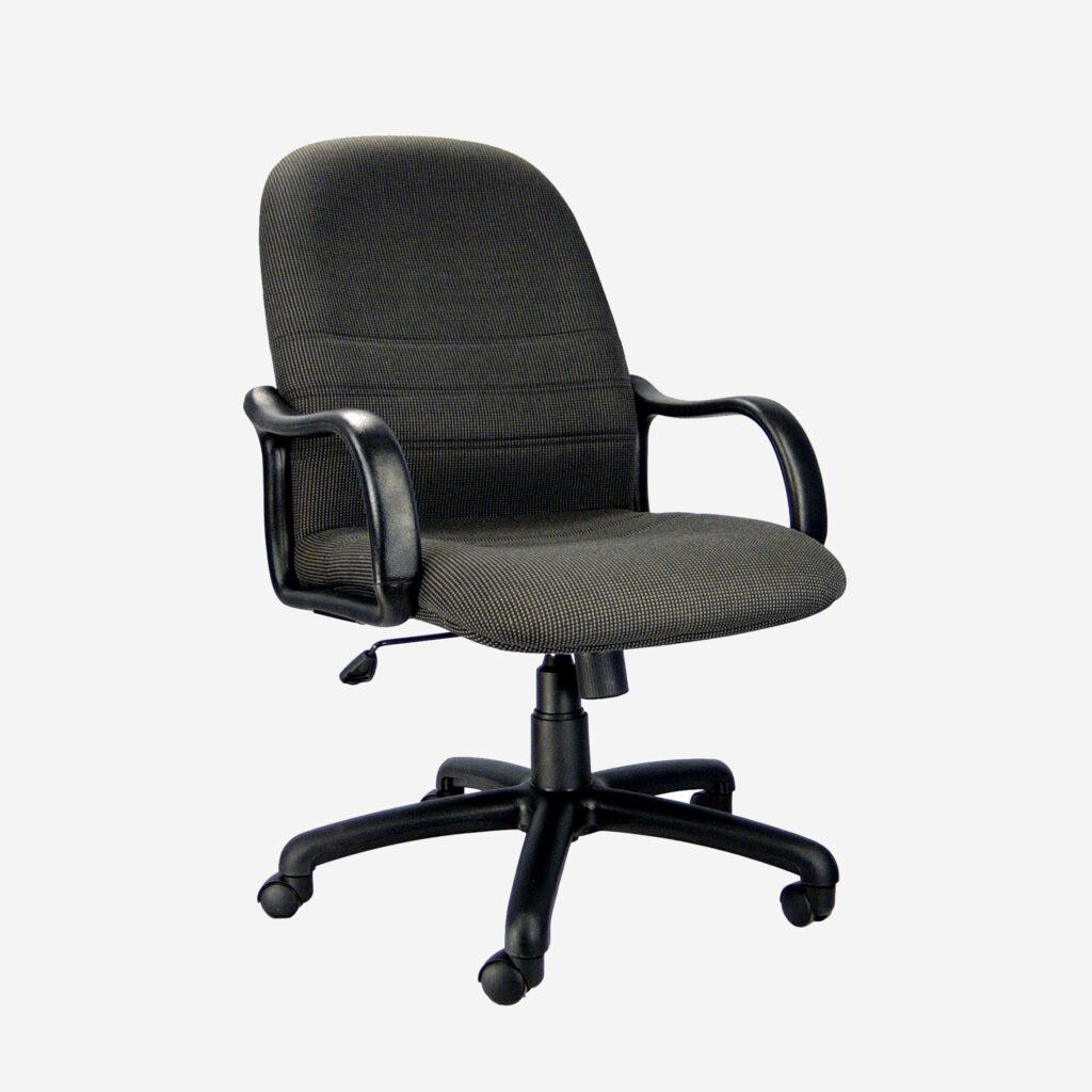Ghế lưng trung VIXM103